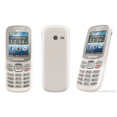 Samsung Feature Blue Duos (B313)